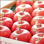 お歳暮 ギフト 山形県産 サンふじ りんご 5kg (特秀品/14玉-18玉入り)