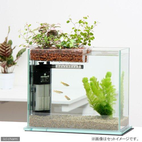 水作 30cmインテリア水槽セット グラスガーデンS300 プランツアクアスタイル