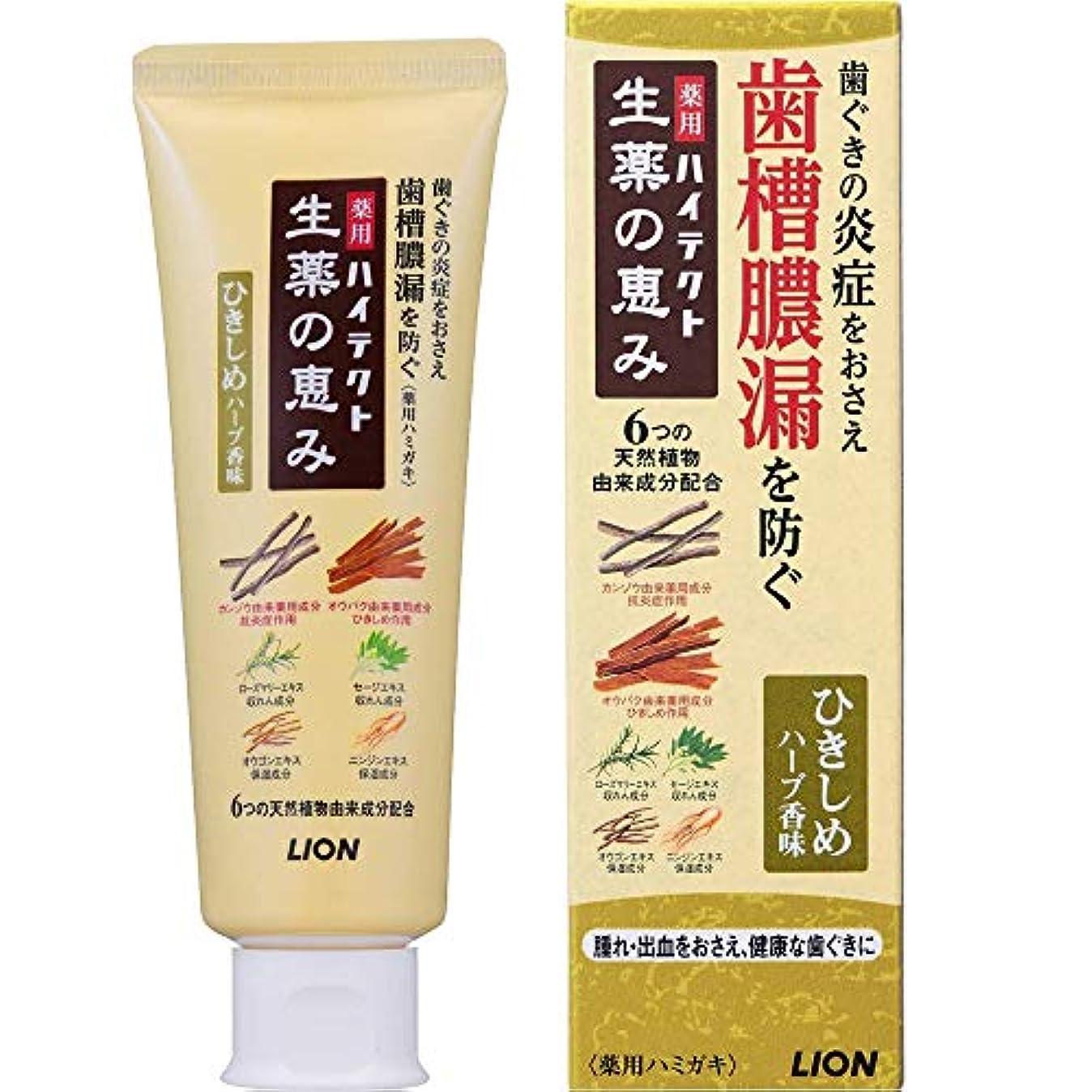 取り替える同僚窒素薬用ハイテクト生薬の恵み ひきしめハーブ香味 90g (医薬部外品)