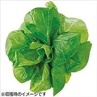 ユーイング 水耕栽培器 Green Farm グリーンファーム 水耕栽培種子 サラダ菜 5袋セット UH-LA06-5SET