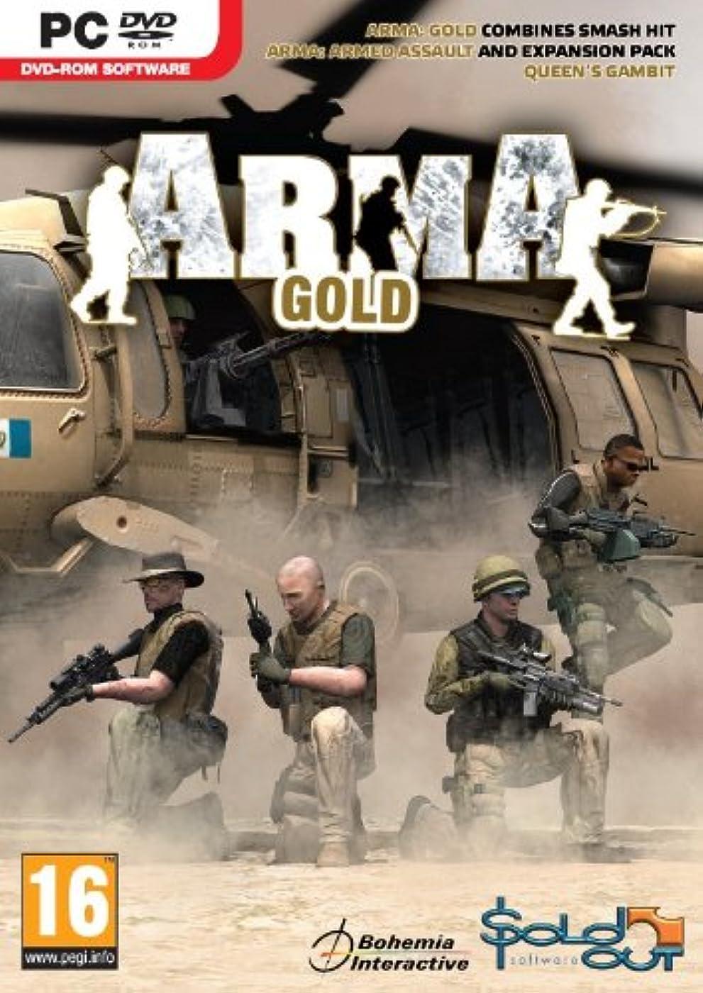 はいいわゆる甥ArmA: Armed Assault GOLD (PC) (輸入版)