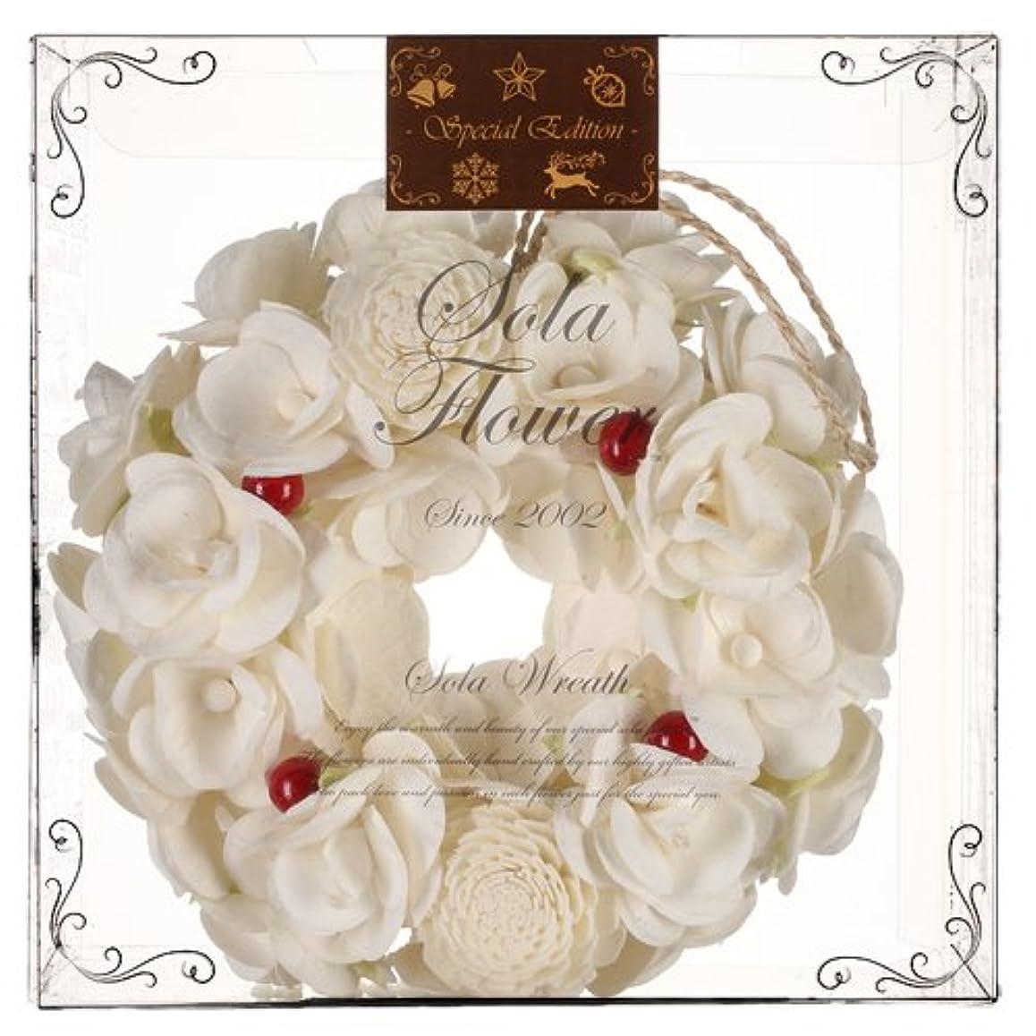 インレイリラックス含むChristmas Sola Flower Wreath【 クリスマス エディション 】ソラフラワー リース Christmas Berry クリスマスベリー Wreath