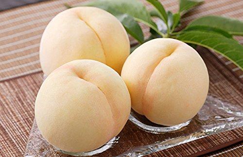 【市場直送】岡山産白桃 3L 1.8kg以上 6玉入り、糖度12度以上