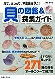 見て、さわって、不思議を学ぶ! 貝の図鑑&採集ガイド