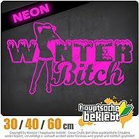 KIWISTAR - Winter Bitch Design 2 15色 - ネオン+クロム! ステッカービニールオートバイ