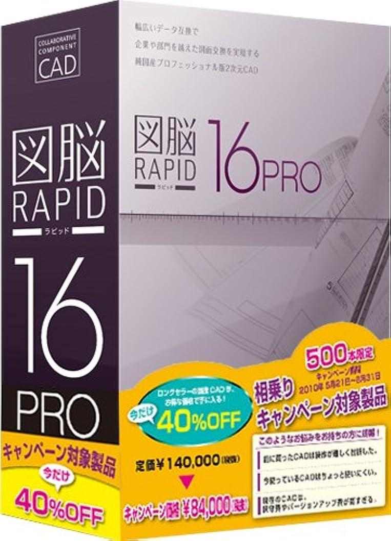 アヒルドット方向図脳RAPID16PRO 相乗りキャンペーン版