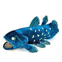 カロラータ シーラカンス Sサイズ ぬいぐるみ (解説知識タグ付き) 古代魚 [やさしい手触り] 11cm×10.5cm×24cm