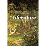 The Adventure (MIT Press)