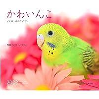 カレンダー2022 かわいんこ インコと小鳥のカレンダー (月めくり・壁掛け) (ヤマケイカレンダー2022)