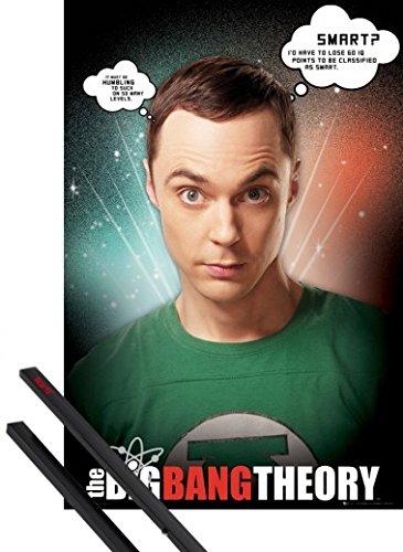 ポスター: The Big Bang Theoryポスター–シェルドン、IQポイント( 36x 24インチ) 24 x 36 Inch BU032023