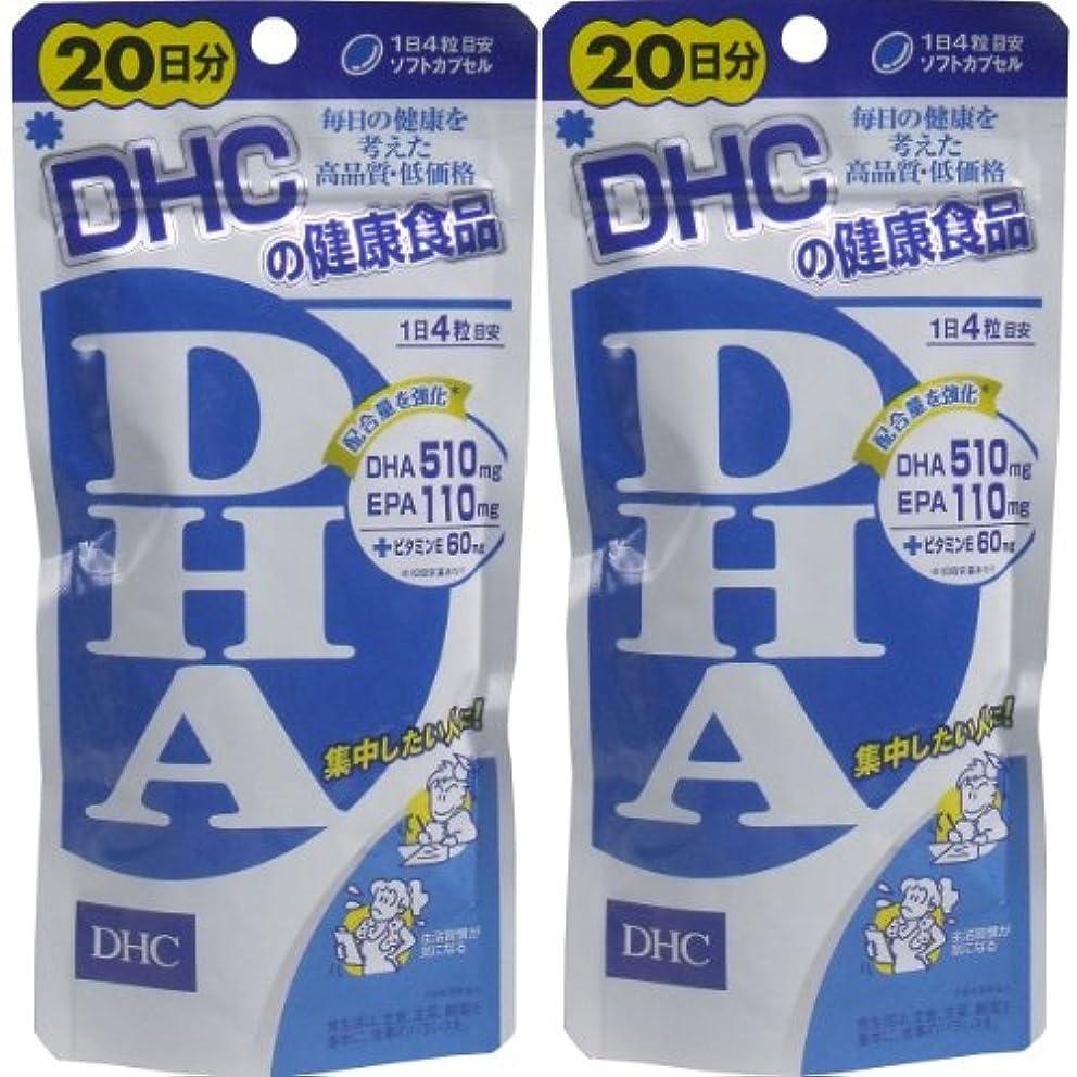 顔料傷つきやすいかもしれない【まとめ買い】DHC DHA 20日分 ×2セット