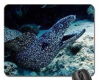 自然風景ゲームのマウスパッド、海洋Morayマウスパッド、マウスパッド(魚のマウスパッド)