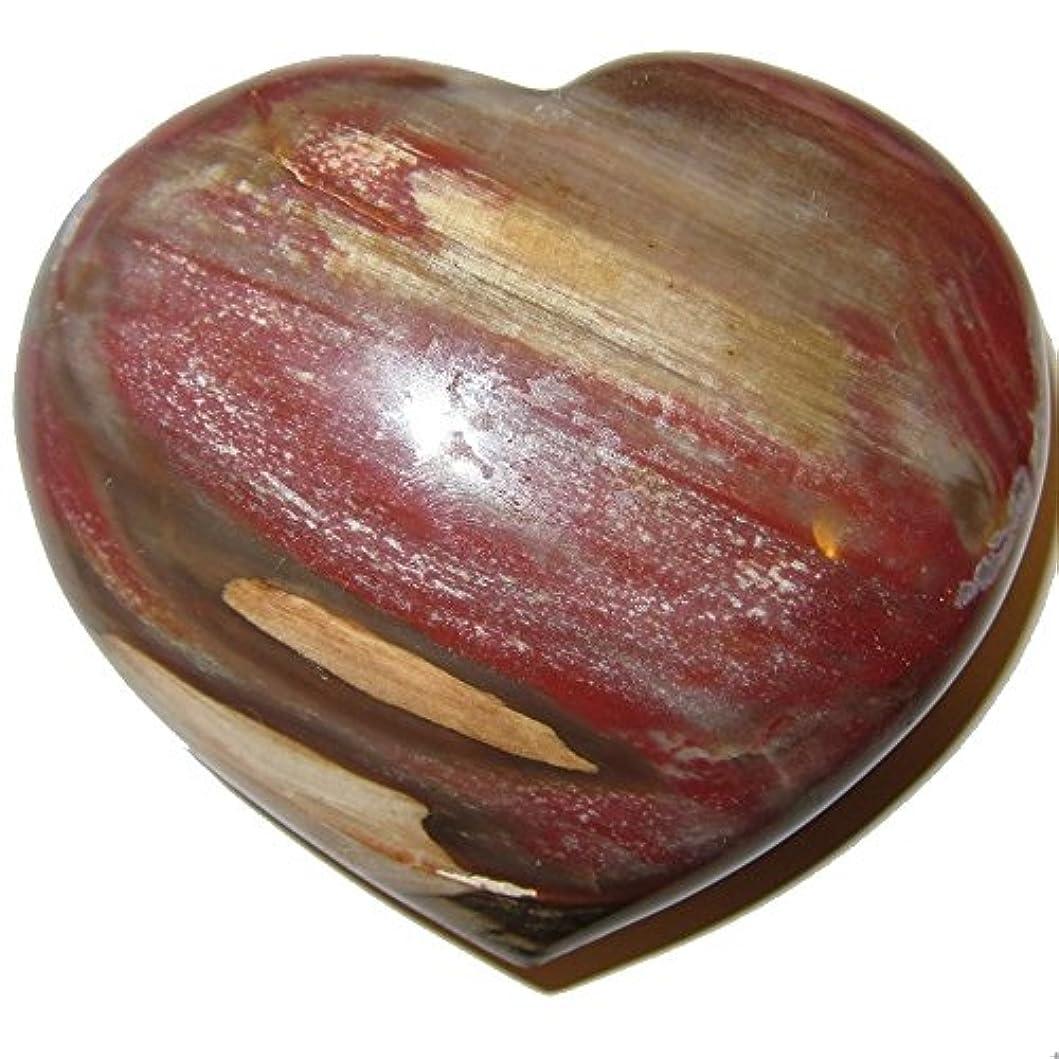 隠されたごみ愚かサテンクリスタルPetrified Wood Heart 3.3