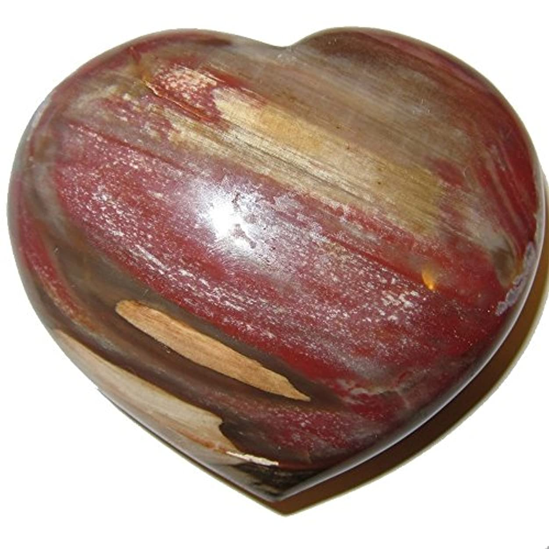 理想的には課す医療のサテンクリスタルPetrified Wood Heart 3.3