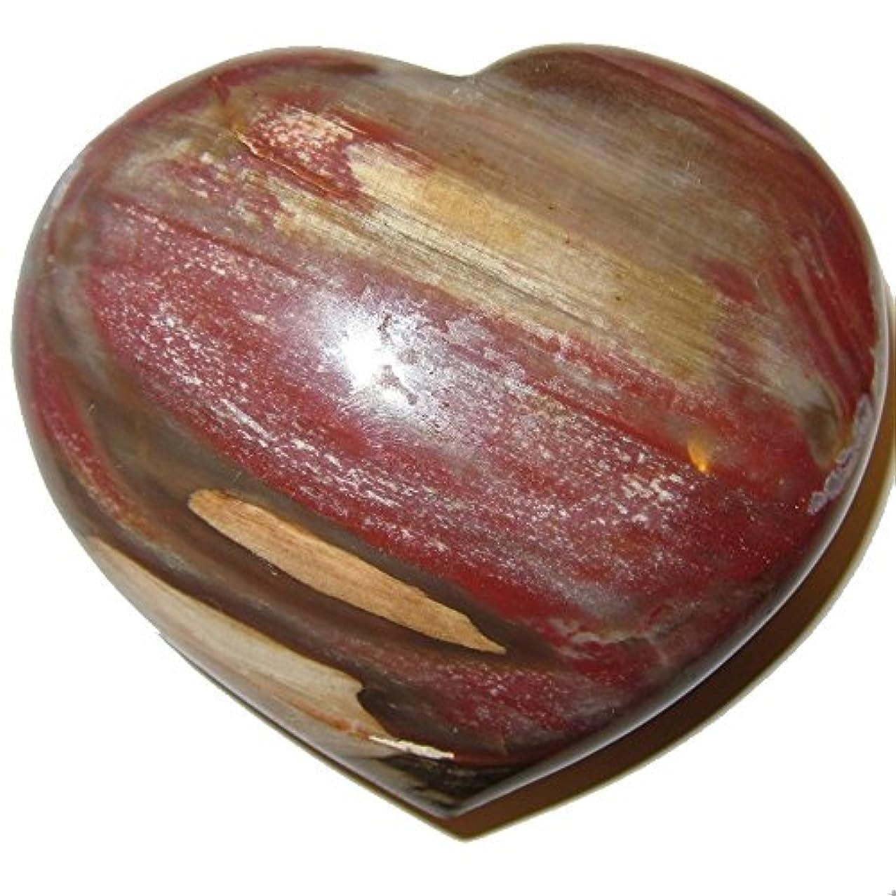 コークス盆知っているに立ち寄るサテンクリスタルPetrified Wood Heart 3.3
