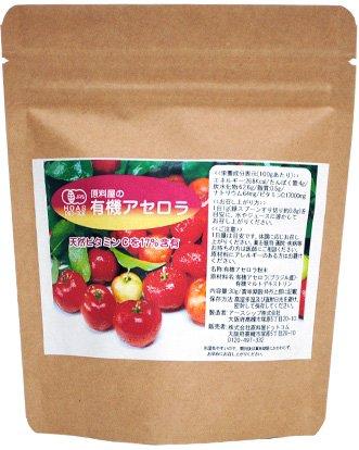 天然ビタミンC オーガニックアセロラ粉末 30g/約30日分