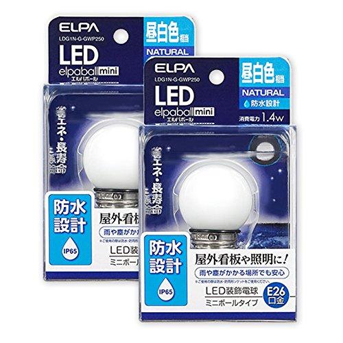 ELPA LED装飾電球 G40 防水