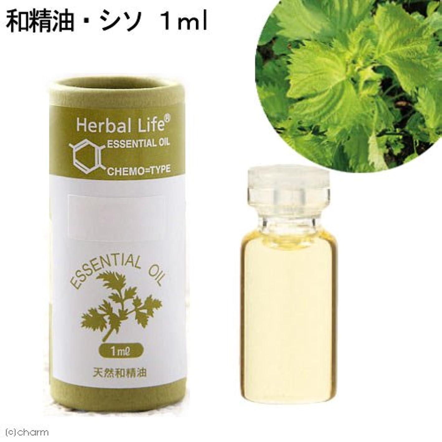 デクリメント拮抗する透明に生活の木 Herbal Life 和精油 紫蘇 1ml