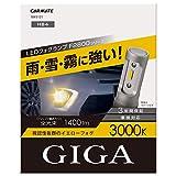 カーメイト 車用 LED フォグランプ GIGA F2800シリーズ HB4 3000K 明るいイエロー光 1400lm 車検対応 3年間保証 BW5121