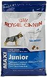 ロイヤルカナン SHN マキシ ジュニア 犬用 4kg 画像