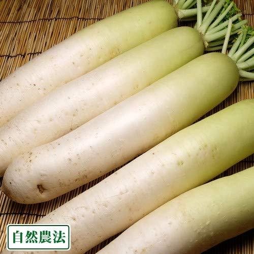 大根 約5kg 自然農法 (青森県 アグリメイト南郷) 産地直送 ふるさと21