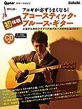 アコギが必ずうまくなる! 初体験アコースティック・ブルース・ギター (CD付) (リットーミュージック・ムック)
