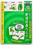都道府県カルタ (花まる学習会の頭がよくなるシリーズ)