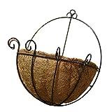 WINOMO フラワーポット 植物ホルダー ハンギングプランター バスケット パームハンギング 鉢 吊り 多肉/花/観葉植物 アイアン 深型 フックタイプ 装飾 屋内屋外 30cm 12インチ