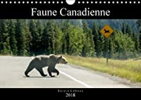 Faune Canadienne 2018: A La Rencontre De La Faune Ouest-Canadienne. (Calvendo Animaux)