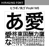OpenType ヒラギノ角ゴ ProN W6 [ダウンロード]