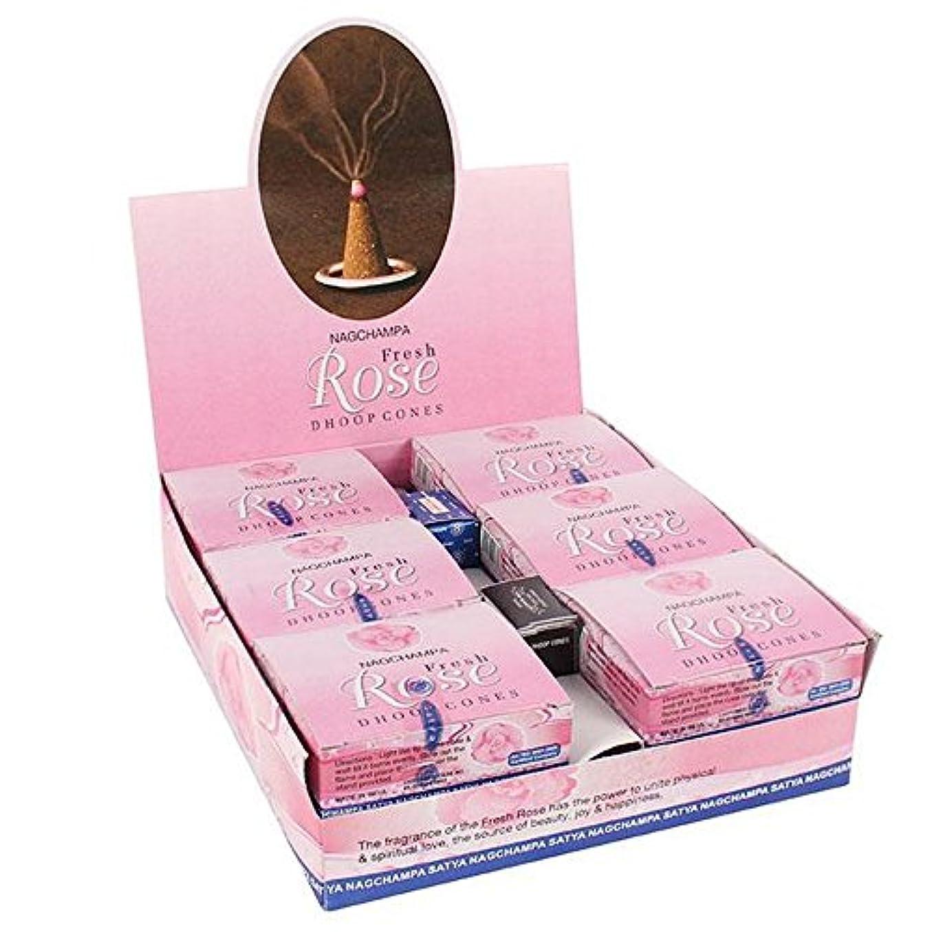 取り出すエキスパート朝食を食べるボックス12のパックのSatya Rose Dhoop Cones