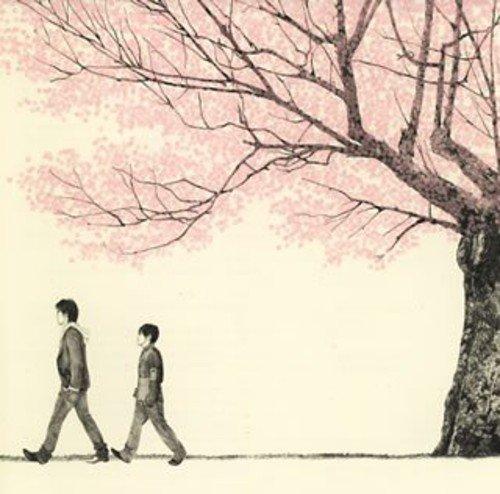 自分自身の恋愛と向き合うための歌!?コブクロの「桜」の歌詞の意味を紐解くの画像