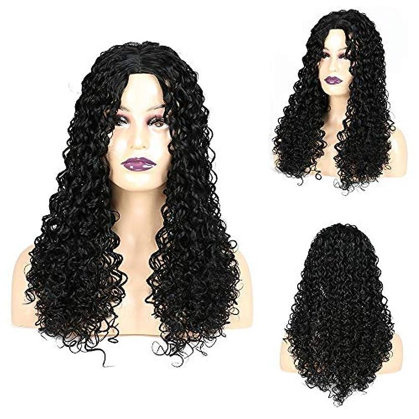緩やかなフェザー仮定HOHYLLYA ジェリー巻き毛のかつら黒アフリカ小さな巻き毛のかつら女性の毎日のドレスパーティーかつらのための長い巻き毛のかつら (色 : 黒, サイズ : 22 inch)