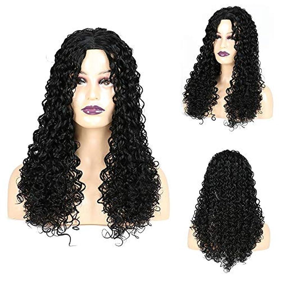 白い肺炎手HOHYLLYA ジェリー巻き毛のかつら黒アフリカ小さな巻き毛のかつら女性の毎日のドレスパーティーかつらのための長い巻き毛のかつら (色 : 黒, サイズ : 22 inch)