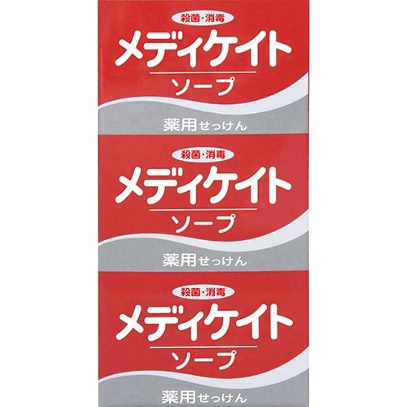 太い家庭ギャングスター薬用メディケイトソープ 100g×3個入 [医薬部外品]