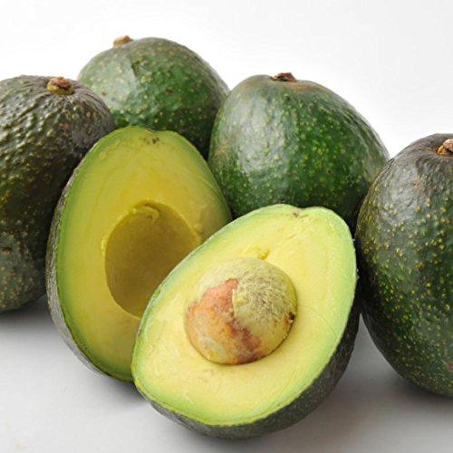 南国フルーツ メキシコ産アボカド 6玉