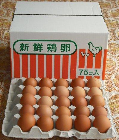 熊本産新鮮たまご 赤 75個入