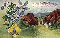 コロラド–ビューの神々の庭、Pikes Peak、Columbine花 9 x 12 Art Print LANT-24268-9x12