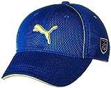 (プーマゴルフ)PUMA GOLF ゴルフウェア ゴルフ メッシュ キャップ 866425 [メンズ] 866425 03 ブルー ダニューブ フリーサイズ