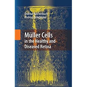 Mueller Cells in the Healthy and Diseased Retina