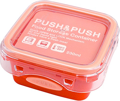 Sugar Land PUSH&PUSH2 コンテナ (S)...