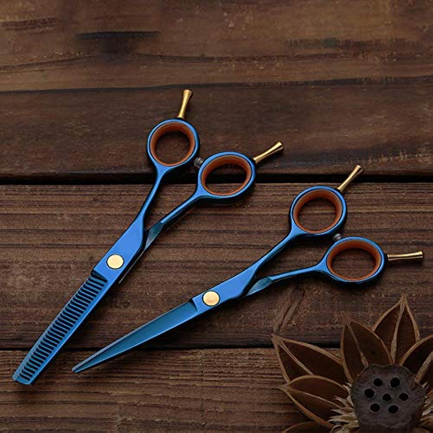 チロ些細なびっくりした理髪用はさみ 多彩なめっきされた二重尾理髪はさみ、平らな+歯はさみ専門の理髪セットの毛の切断はさみのステンレス製の理髪師のはさみ (色 : 青)