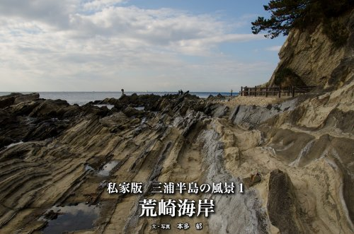 私家版:三浦半島の風景 vol.1 〜荒崎海岸〜
