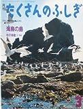 月刊 たくさんのふしぎ 海鳥の島 1991年 03月号(第72号) [雑誌]