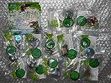 天然水 森と清流 BIRDTALES-2 (サワガニ.ヤマメ.アマゴ他) 全12種コンプ