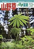 山野草とミニ盆栽 2017年 03 月号 [雑誌] 画像