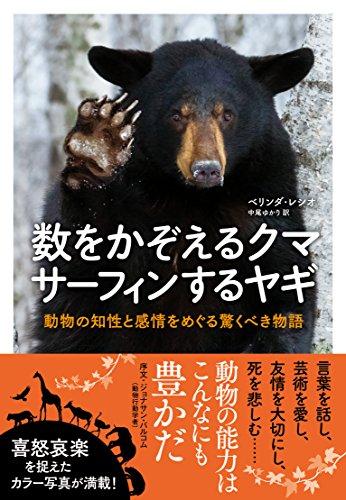 数をかぞえるクマ サーフィンするヤギ―動物の知性と感情をめぐる驚くべき物語