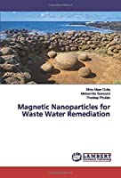 Magnetic Nanoparticles for Waste Water Remediation