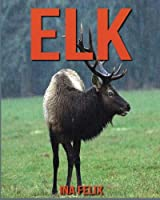 Elk: Children's Book of Fun Facts & Amazing Photos on Animals in Nature - a Wonderful Elk Book for Kids Aged 3-7