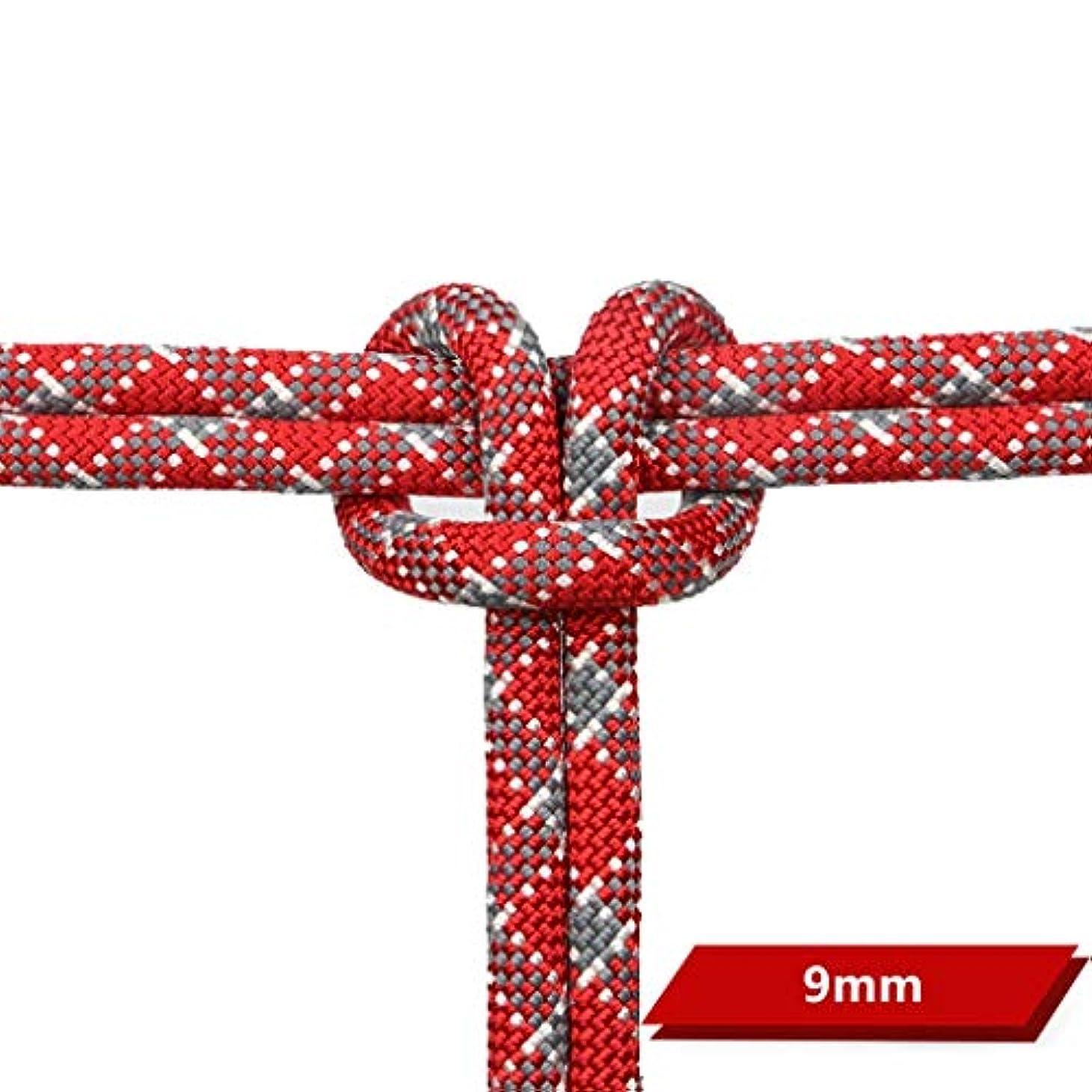 年金受給者休眠嘆願クライミングハーネス 直径9mmのデュポンワイヤー静的ロープ、多色の任意屋外の上昇のロープ (色 : 赤, サイズ さいず : 9mm-40m)